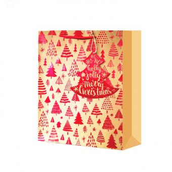 High Quality Recycle color Fancy Paper Bright Christmas Gift Bag Assortment
